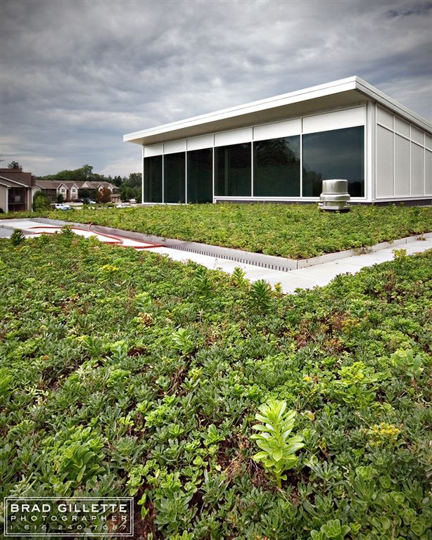 green roof system looking towards Center