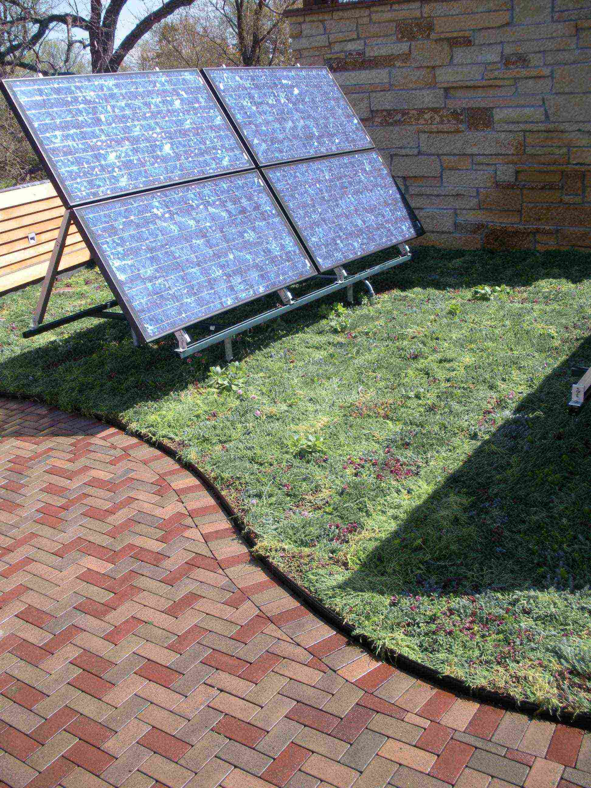 residential green roof system installed near owner's solar panels