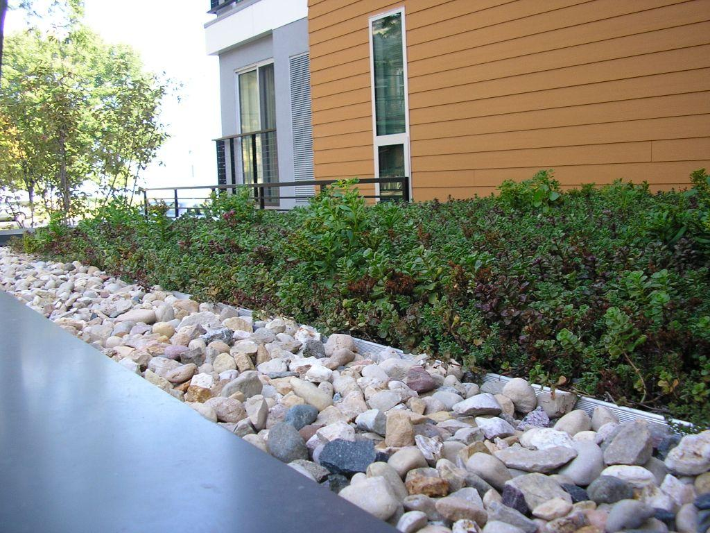 narrow green roof installed with stones