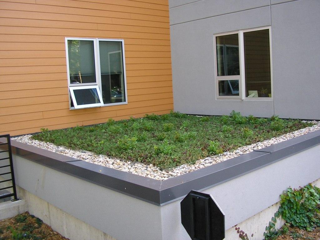 installation of small green roof on a small other level of the building near windows