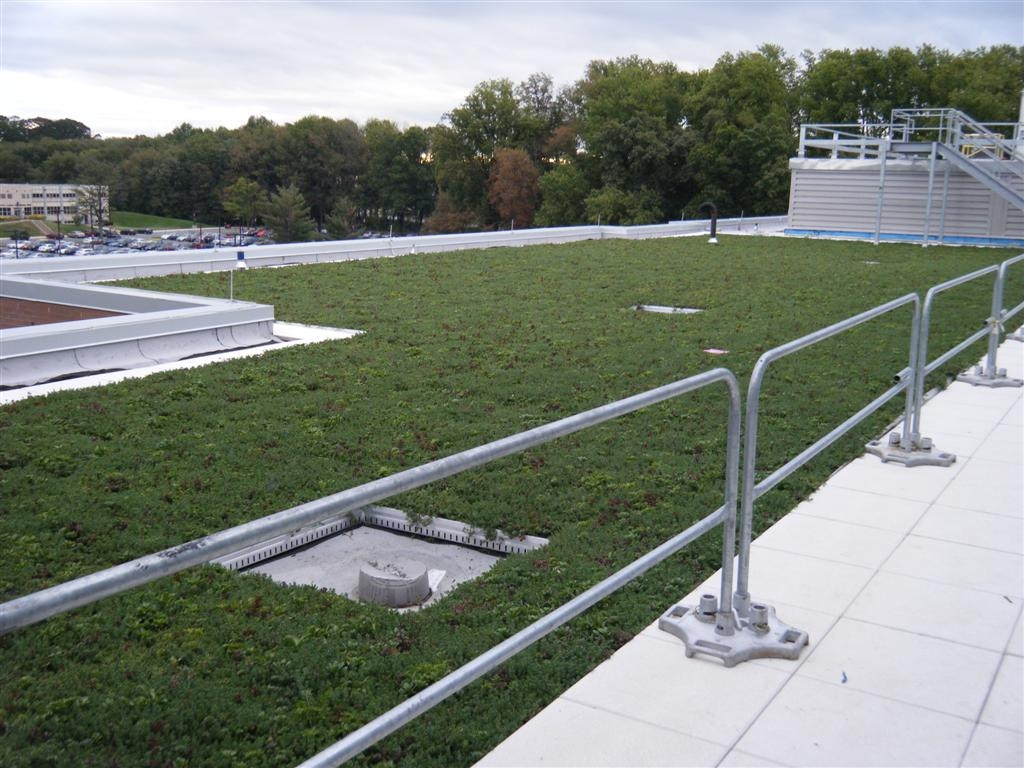 Montgomery Community College Science Center Green Roof by LiveRoof