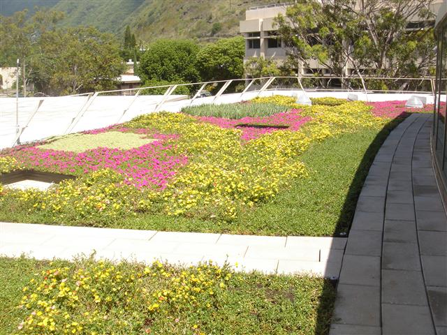 honolulu hawaii vegetated roof by liveroof