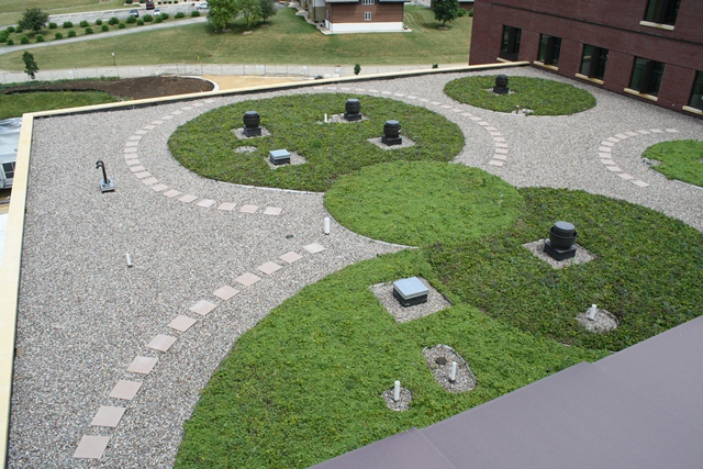 monroe wisconsin green roof by liveroof