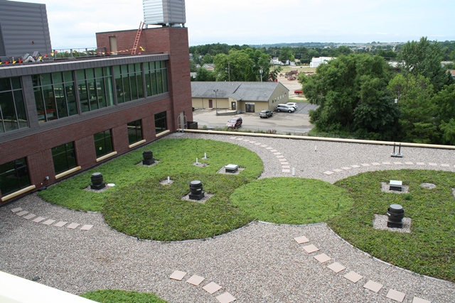 monroe wisconsin living roof by liveroof