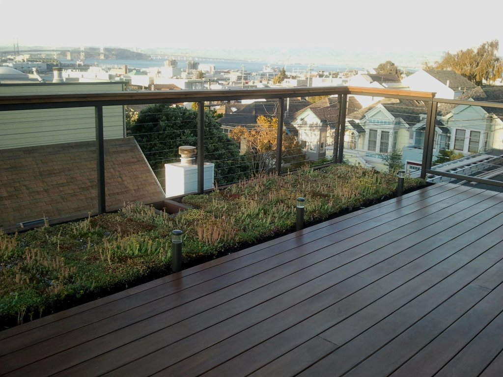 san francisco patio with green roof