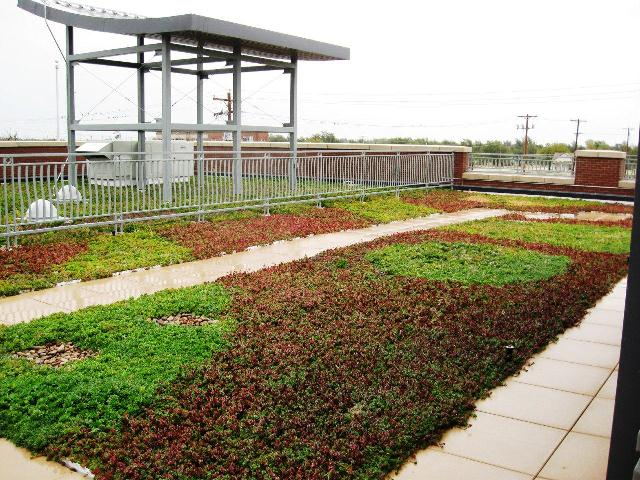 greensburg kansas living roof by liveroof