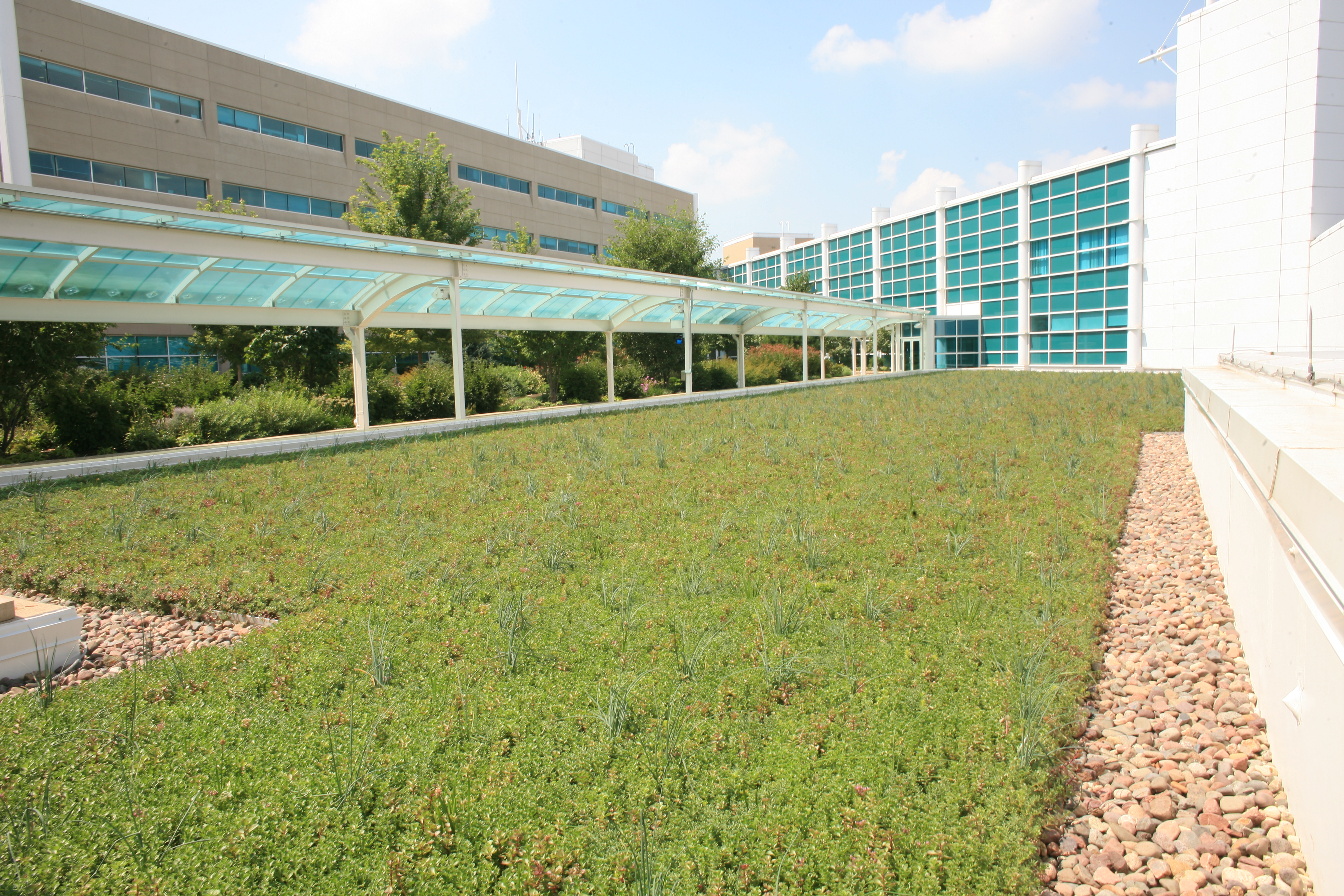 aurora illinois green roof by liveroof