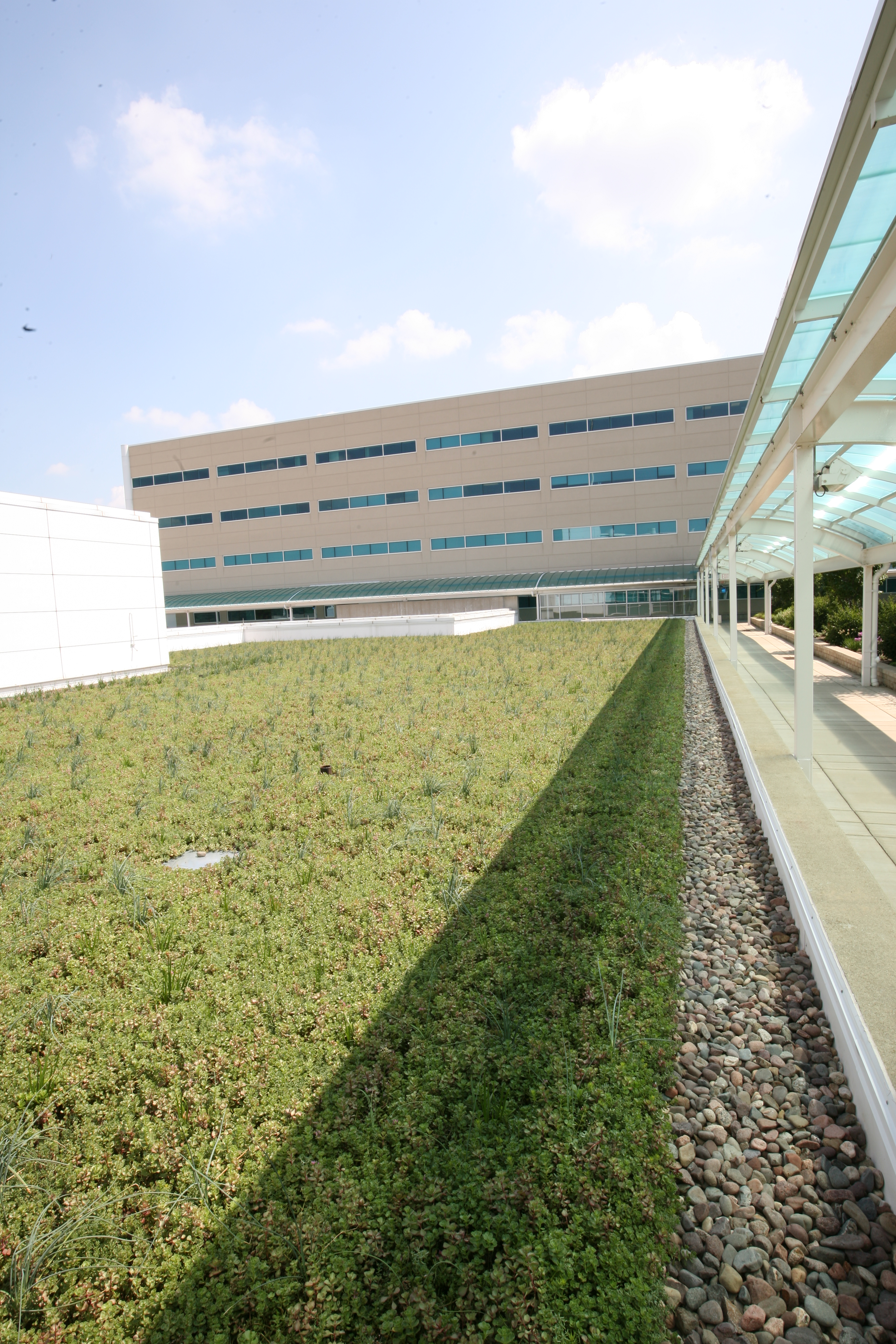 aurora illinois vegetated roof by liveroof