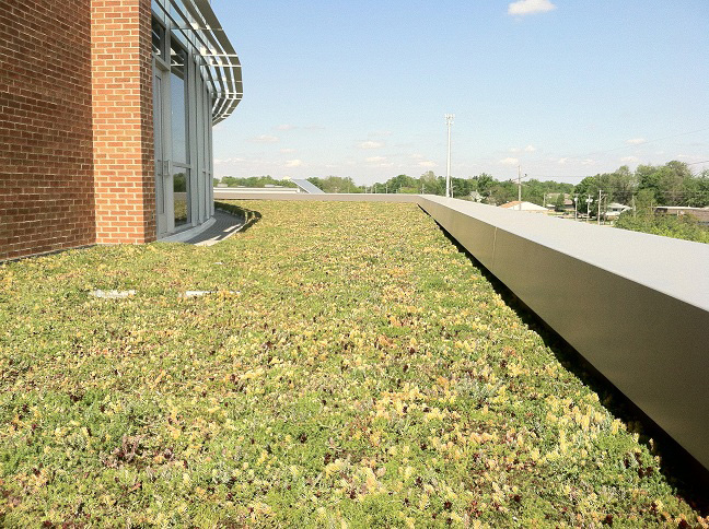 Complete installation of Green Roof in Normal, IL