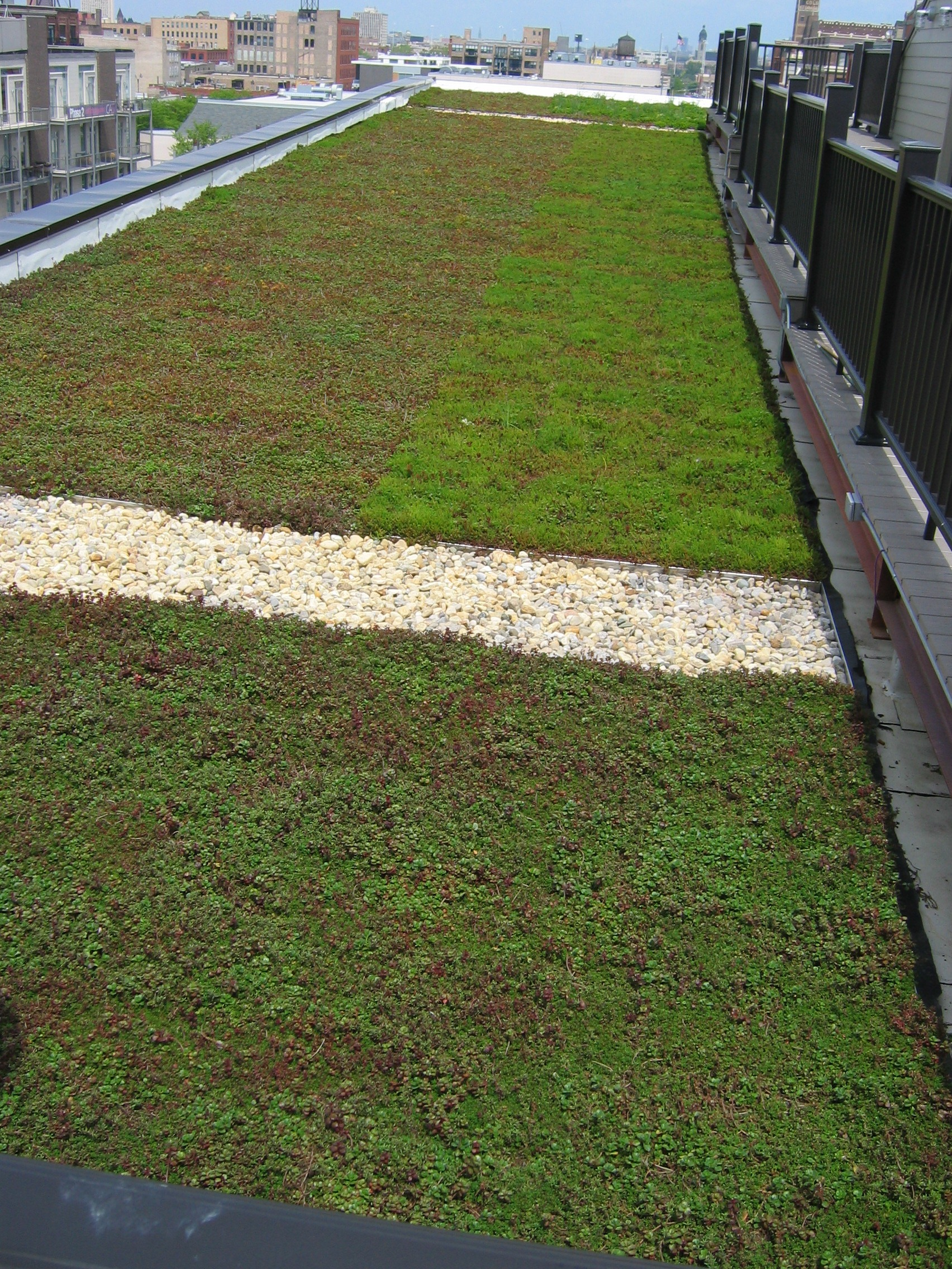 Green Roof in Chicago, IL