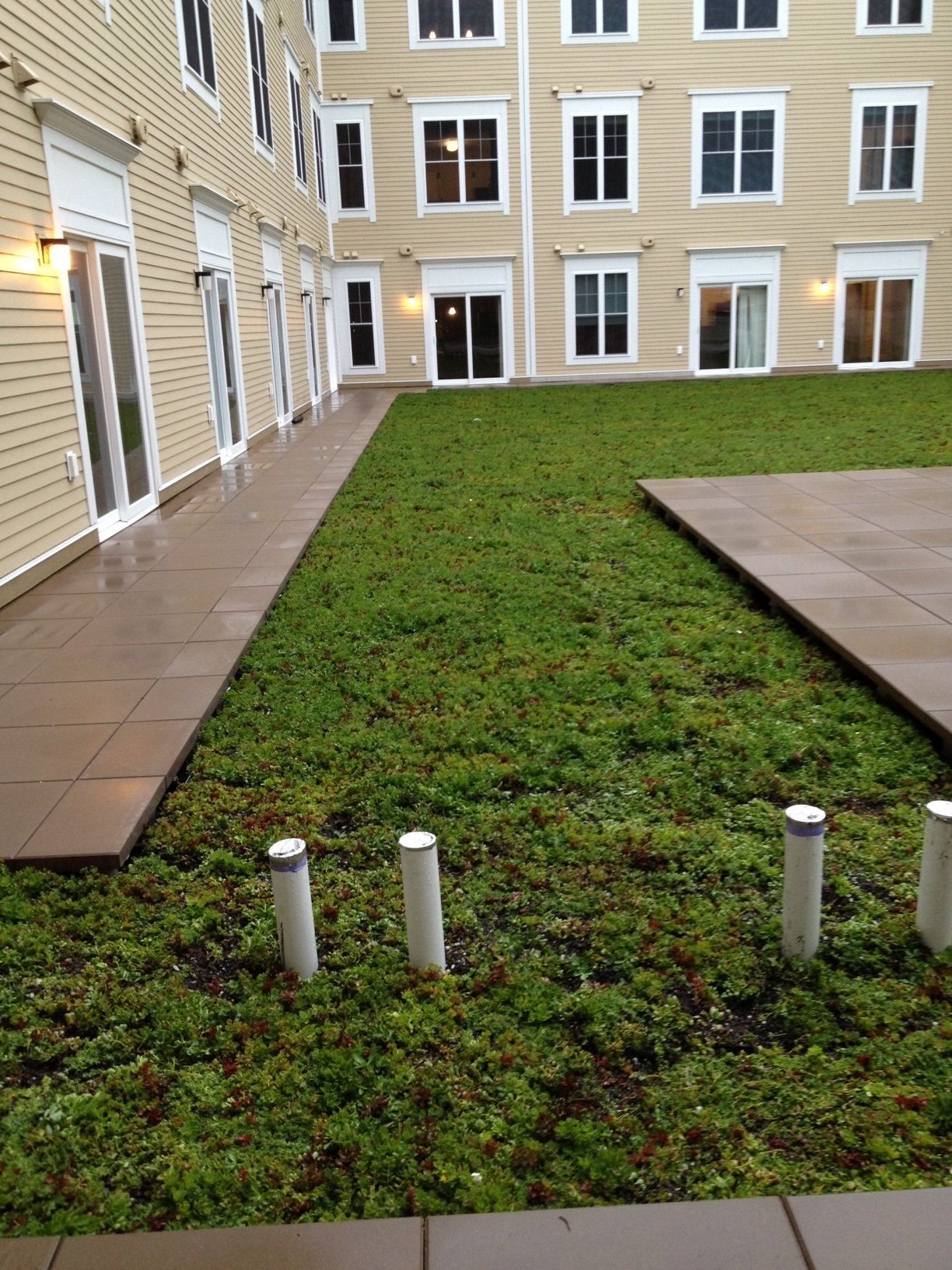 Green Roof in Mansfield, CT