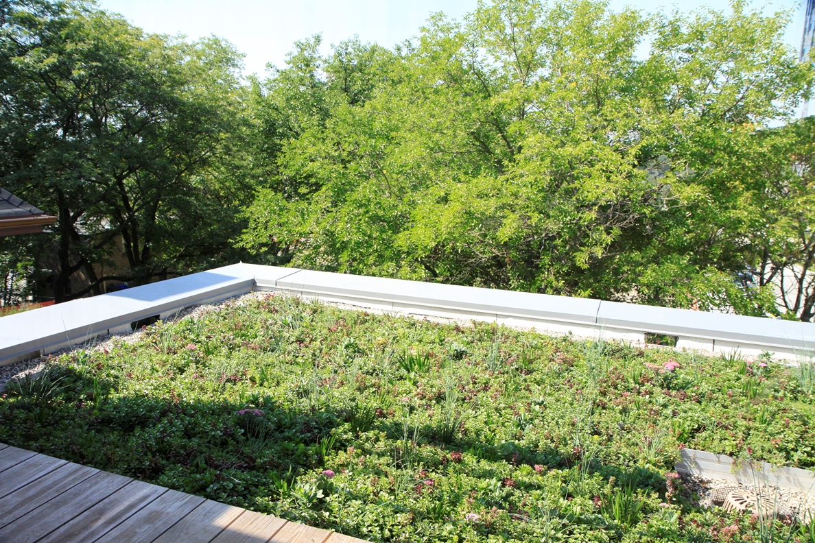 Green Roof at Children's Hospice in Toronto, ON Canada