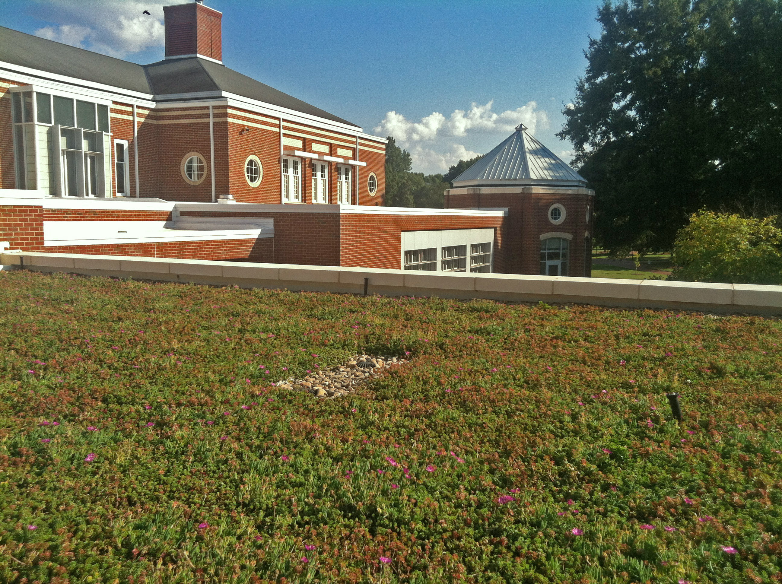 Green Roof at Elon Global Dining Hall in Elon, NC