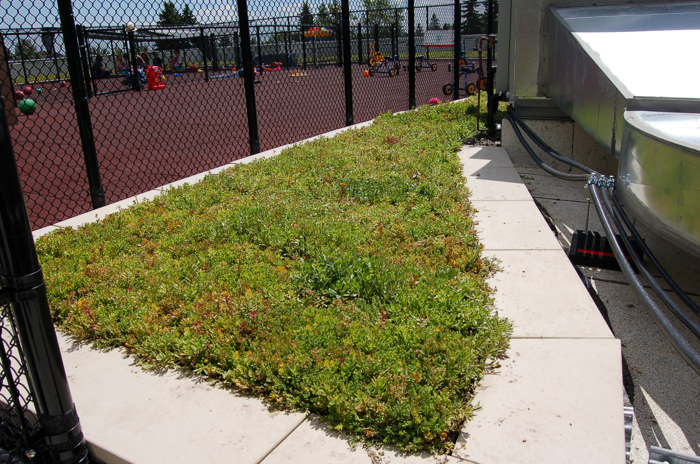 Green Roof surrounded by outdoor playground of Daycare