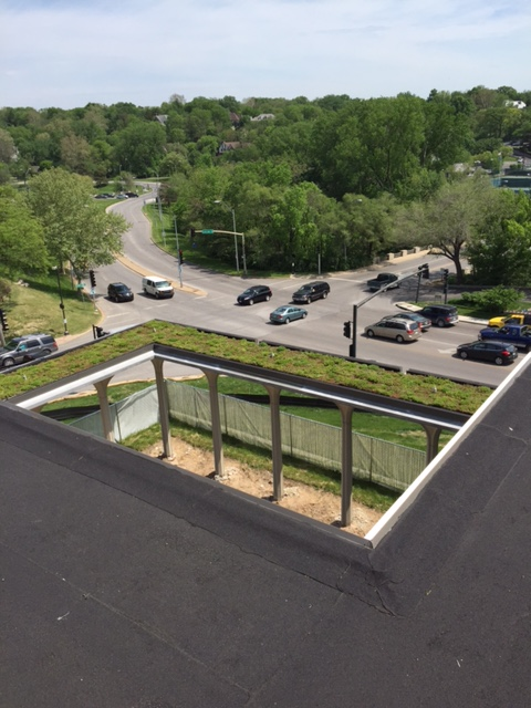Green Roof at Tulip Building in Kansas