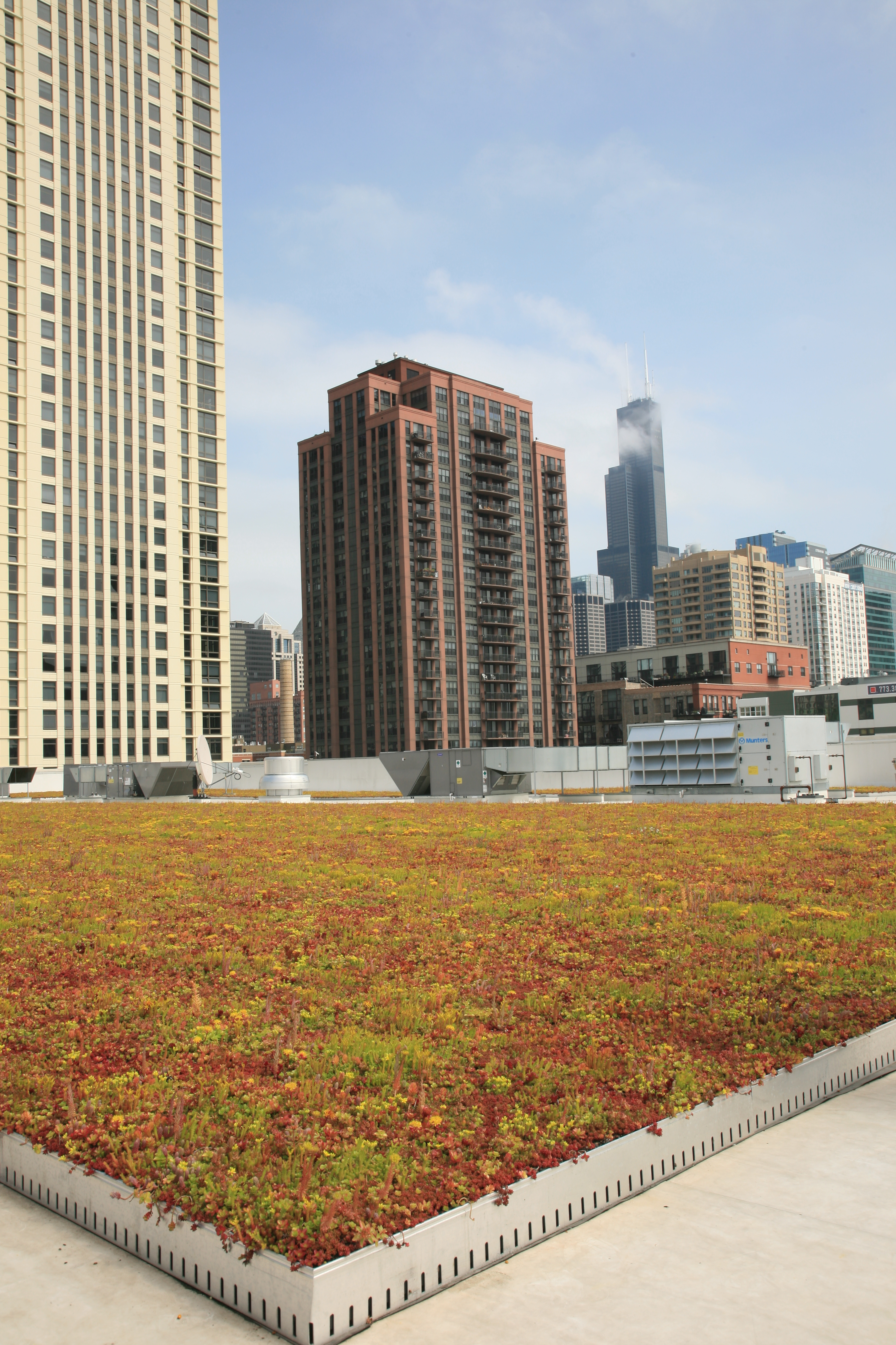 Chicago Jewel Osco Vegetated Roof by LiveRoof