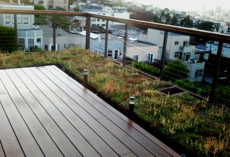 Green Roof installed next to deck