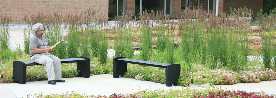 Green Roof installation at Muskegon Community College in Michigan