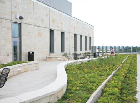 GVSU Library LiveRoof