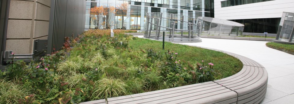 System Options Liveroof Hybrid Green Roofs