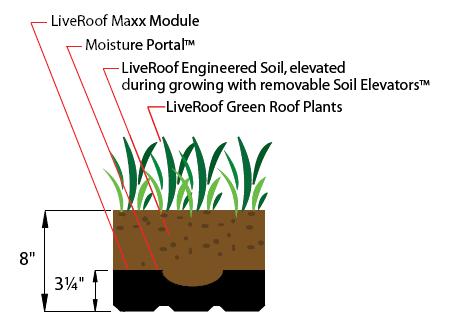 LiveRoof Maxx Module