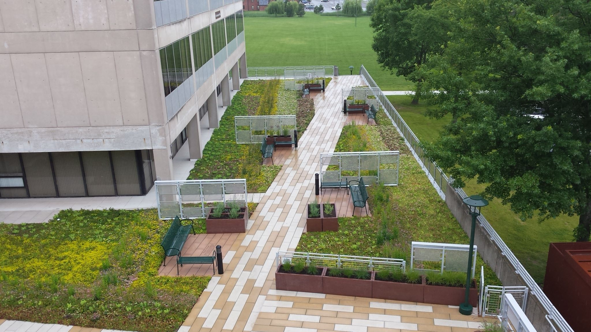 SUNY College of Brockport's Completed Green Roof Brings Designer's Vision to Life.