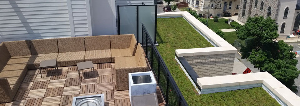 Green Roof atop The Colonel Mixed Use Development in Washington DC