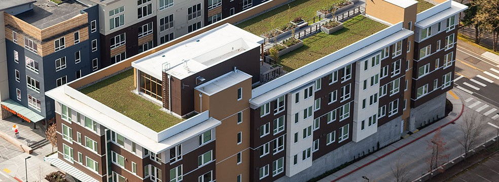 Living Roof at Velocity Appartments
