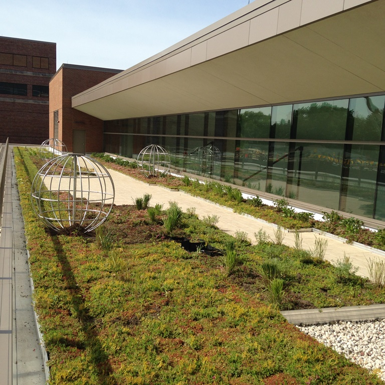 Appleton Wisconsin Hospital Green Roof