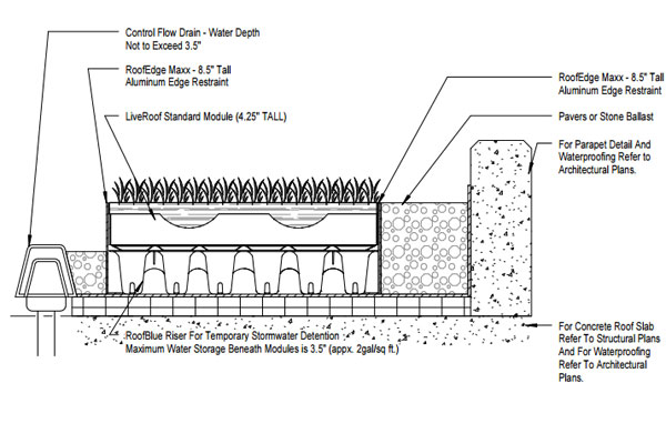 Liveroof Hybrid Green Roofs Detail Drawings