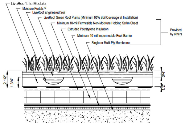 Liveroof hybrid green roofs detail drawings for Soil details