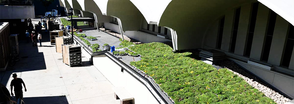 New Liveroof 174 Green Roof Moves Colorado College Closer To